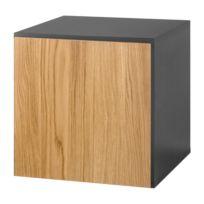 Hänge-Designbox hülsta now to go II