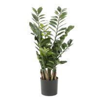 Kunstplanten Piratu (2-delig)