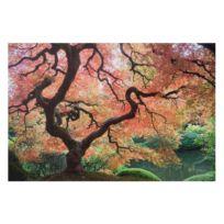 Bild Japanischer Garten III
