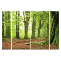 Schuifgordijnen Beech Trees (6-delig)