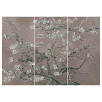 Afbeeldingen Amandelbloesemboom (3 stuk)