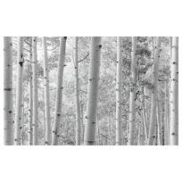 Papier peint intissé Forêt de trembles