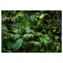 Vlies Fototapete Sunny Jungle