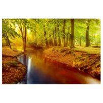 Tableau magnétique Bois d'automne