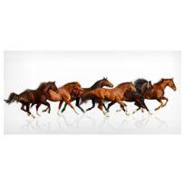 Magneetbord Paarden
