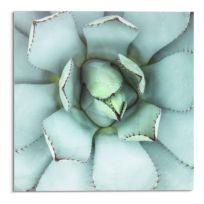 Tableau déco en verre Cœur d'agave
