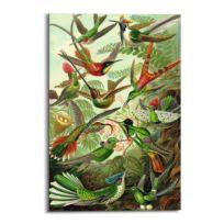Tableau déco Hummingbirds