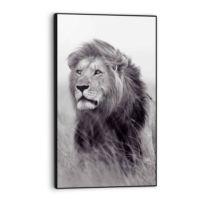 Bild Löwe auf der Savanne König