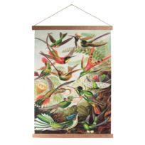 Affiche Birds