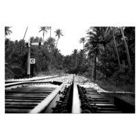Bild Jungletrain