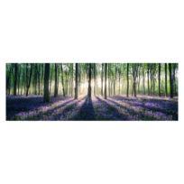 Afbeelding Verzauberter Wald