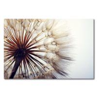 Leinwandbild Big Dandelion