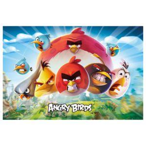 Bild Angry Birds Voegel