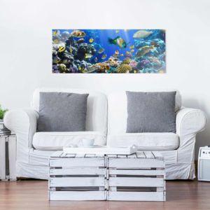 Bild Underwater Reef