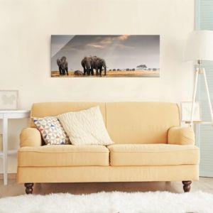 Bild Elefanten der Savanne