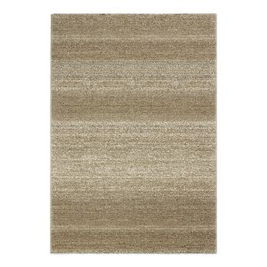 Teppich Carpi