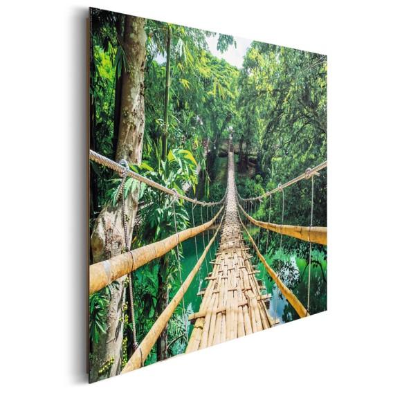 Bild Brücke Dschungel Bild Dschungel Bild Brücke Dschungel Brücke FKJl1cT