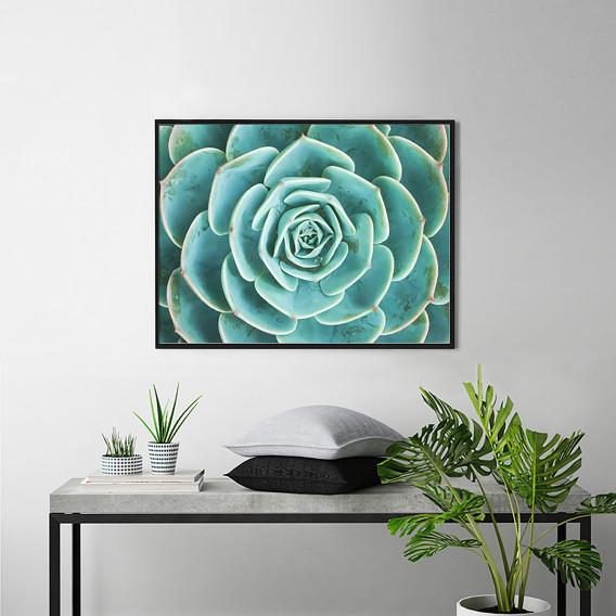 Succulents X Bild The Of Buche Arrangement 62 MassivPlexiglas82 Cm shrQCtdx