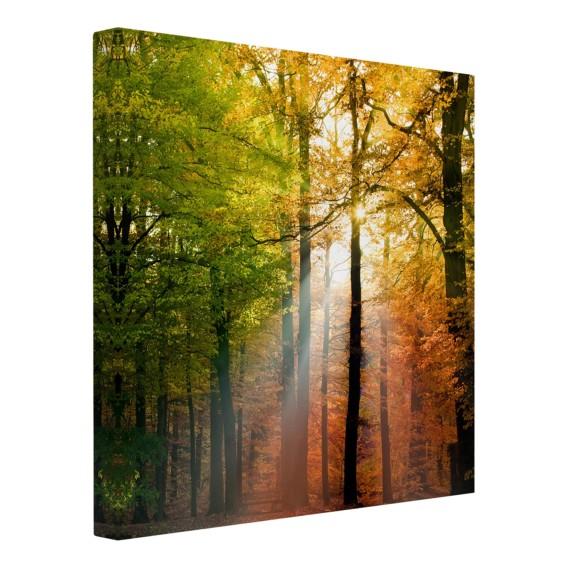 X Light Bild 120 Morning Cm FichteMehrfarbig LeinwandMassivholz UpqzGVSM
