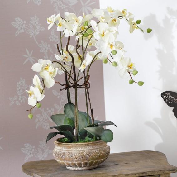 Antik grün Orchideentopf Textil keramikWeiß Kunstpflanze y0Om8nvNw
