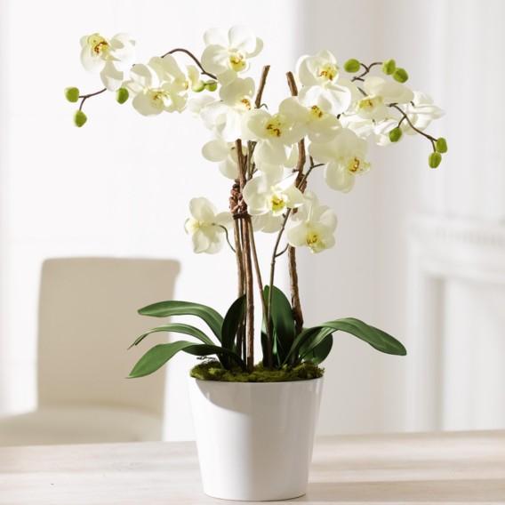 Orchideentopf Kunstpflanze weiß Elegance