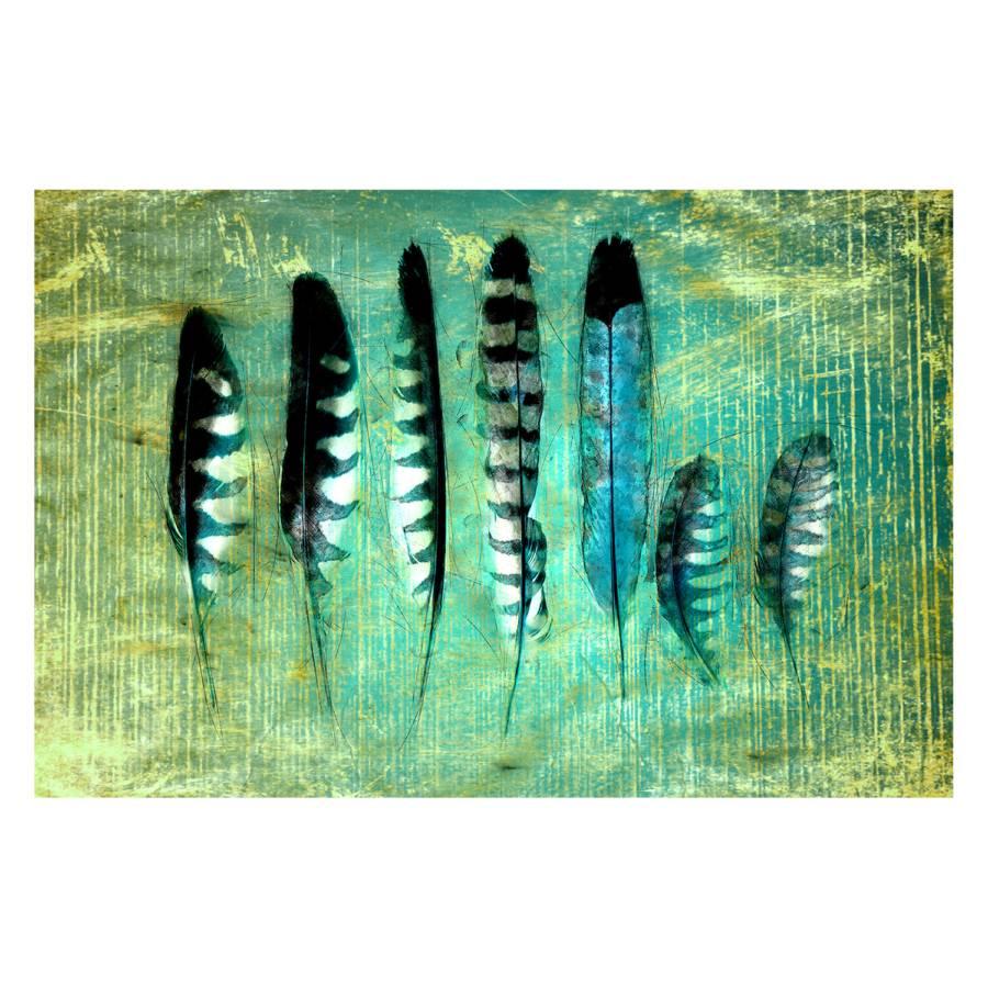 Sur Toile Sur Feathers Impression Impression Toile v8yn0ONwm