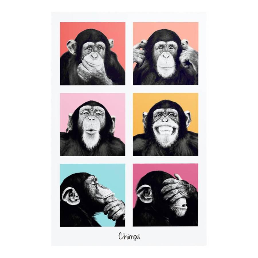 Tableau Schimpanse Monkey Déco Déco Tableau Schimpanse I Monkey Déco Tableau I SqVpMUz