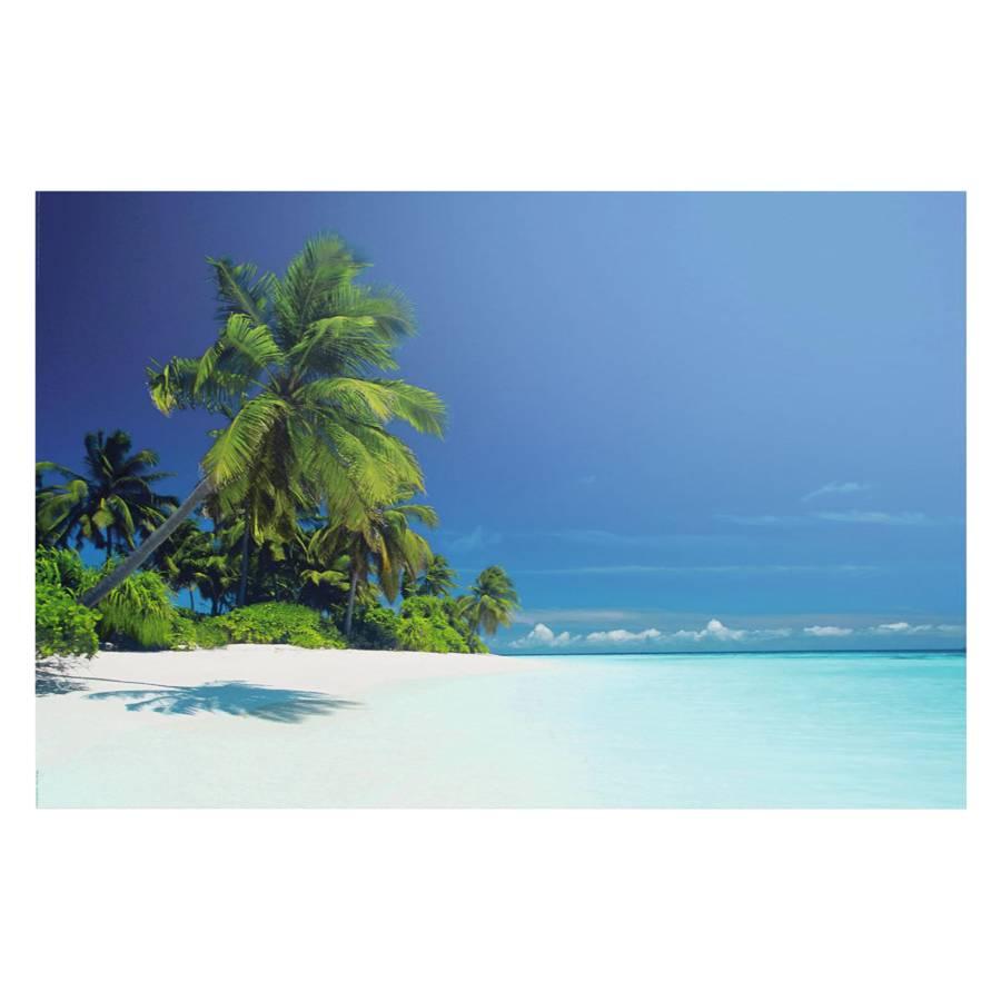 Der Der Malediven Bild Lagune Der Bild Bild Lagune Lagune Malediven qpUVGjLSzM