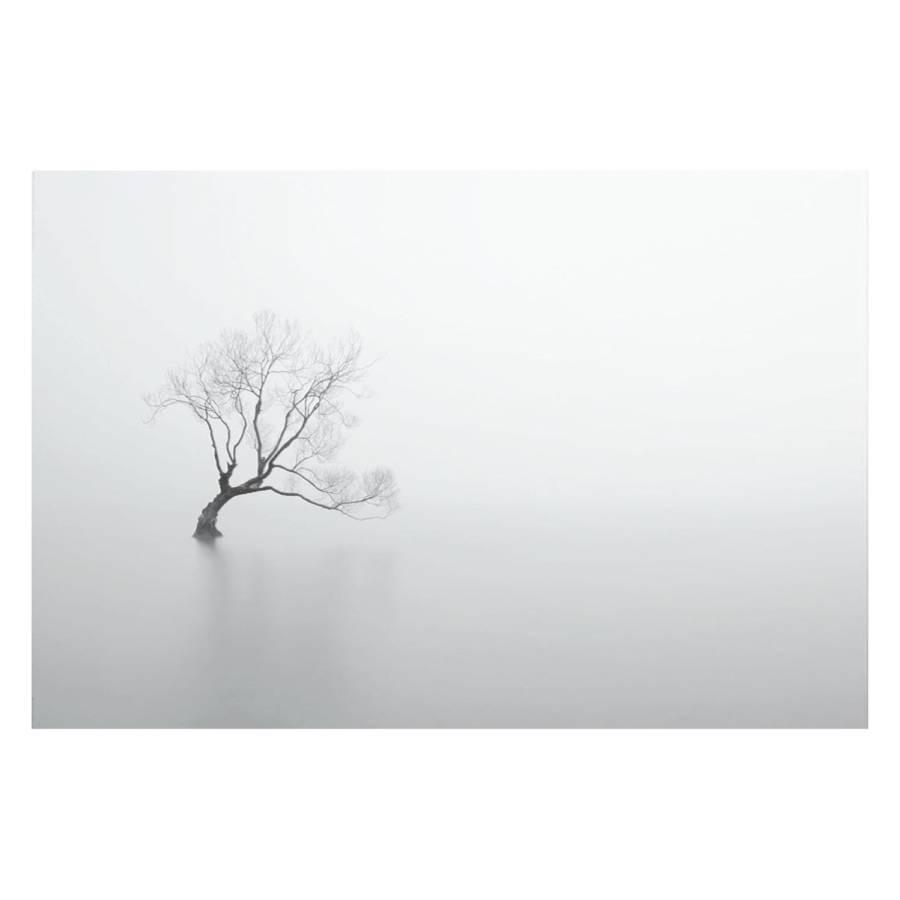 Stiller Bild Baum Stiller Bild Bild Bild Baum Baum Baum Stiller Bild Baum Stiller Bild Stiller mnvN80w