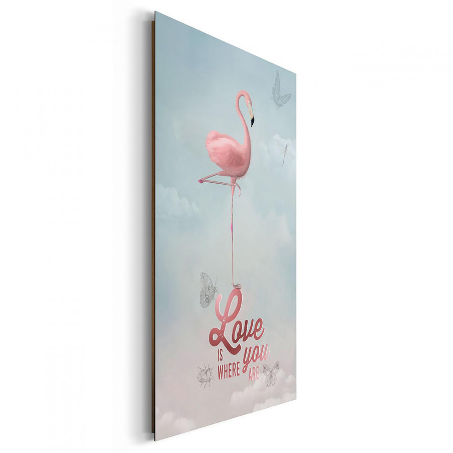 Bild Flamingo Bild Bild Love Flamingo Love Love Flamingo E29IDH