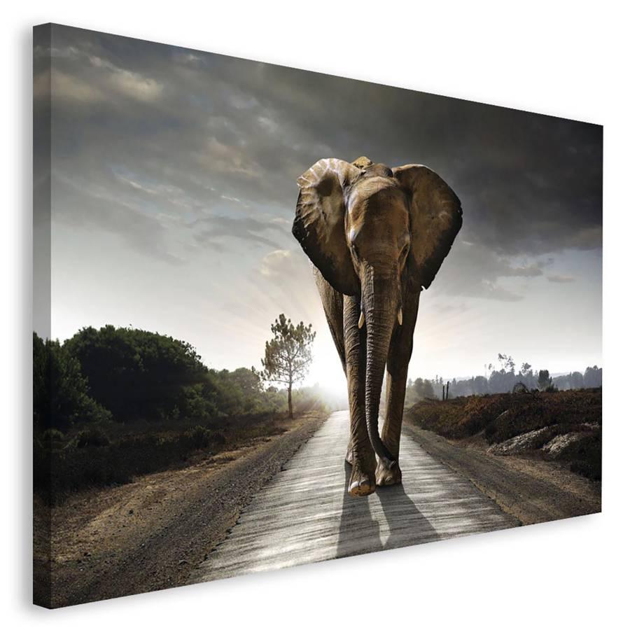 Tableau Elefant Elefant Déco Déco Tableau Elefant Ii Tableau Ii Déco xWQCodBre
