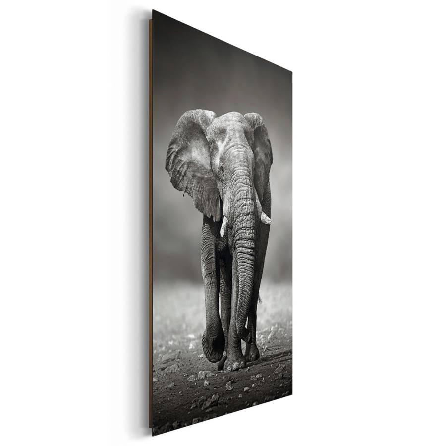 Elefant Elefant Iii Elefant Tableau Tableau Tableau Déco Déco Iii Tableau Iii Déco N8wOvmn0