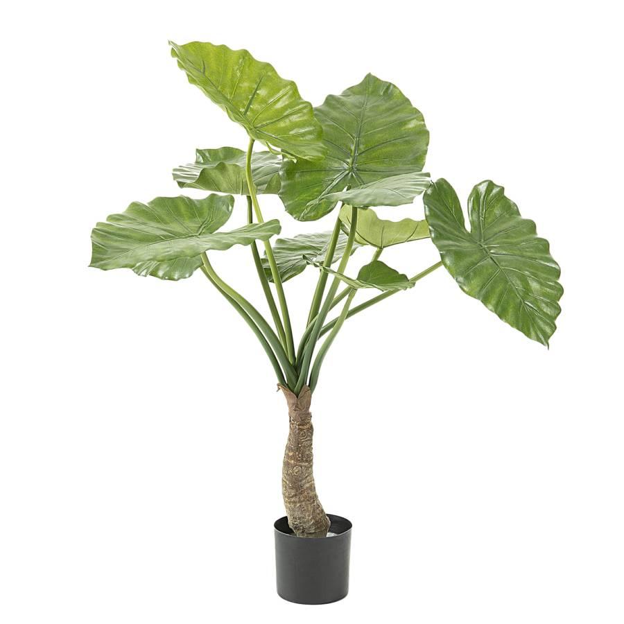 ÉlémMatière PlastiqueVertNoir Plantes Artificielles Artificielles Jalhay2 Plantes QrdtsCxohB