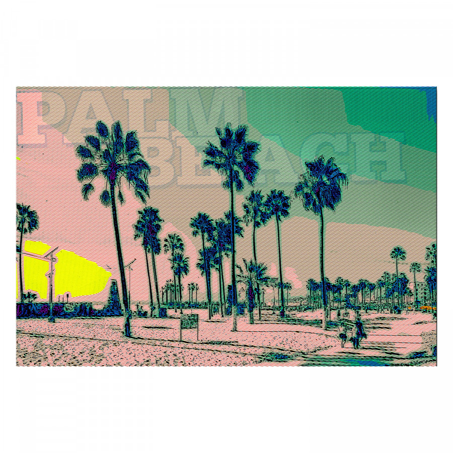 Mehrfarbig Bild Palm Beach Mehrfarbig Bild Bild Palm Beach Mehrfarbig Palm Beach SMVpUqz