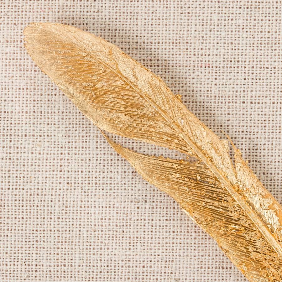 Bild Bild Bild Bild Federn Goldene Federn Federn Bild Goldene Bild Goldene Federn Federn Goldene Goldene XwZn08PNOk