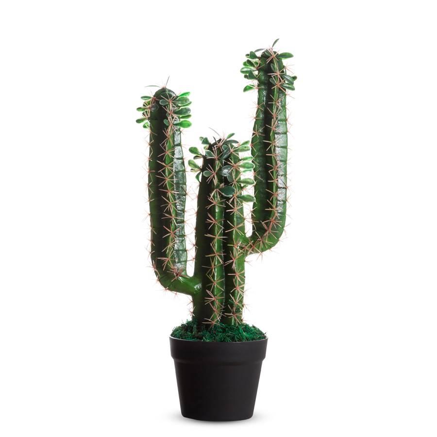 PvcGrünBraun Kaktus Kaktus Ii Kaktus Kunstpflanze Kunstpflanze Ii PvcGrünBraun Ii Kunstpflanze EHYD2IW9