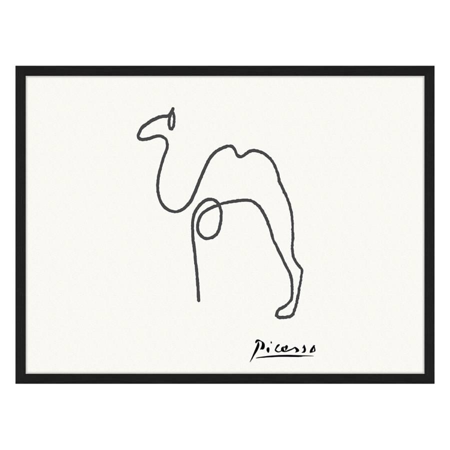 Cm Buche MassivPlexiglas82 X Camel 62 Bild 29EDHI