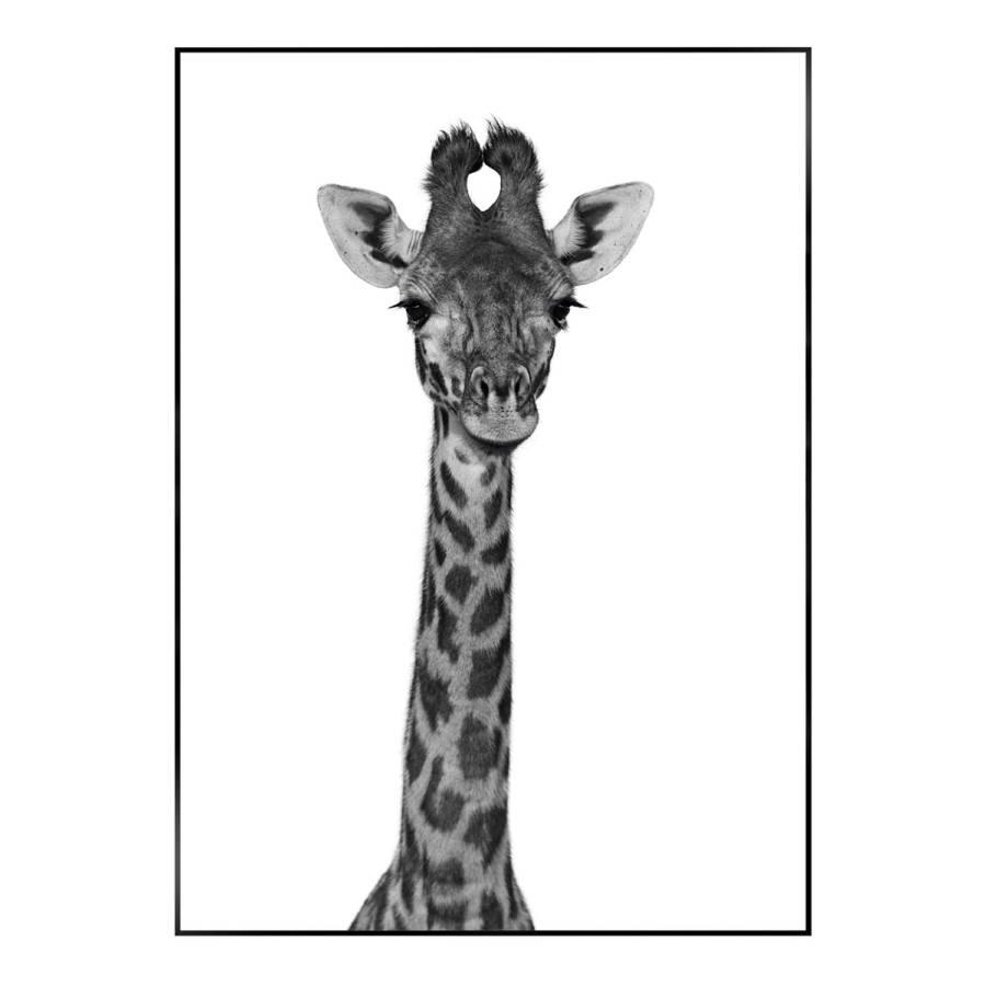 Giraffe Giraffe PapierMdfSchwarz Bild PapierMdfSchwarz Bild Giraffe Bild sCBrthxQd