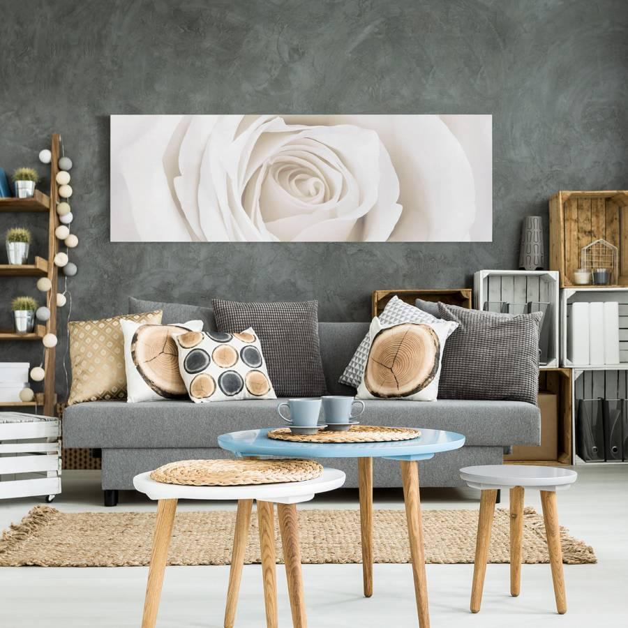 30 Pretty Cm Rose I LeinwandMassivholz 90 FichteMehrfarbig X White Bild uiwTOPZkX
