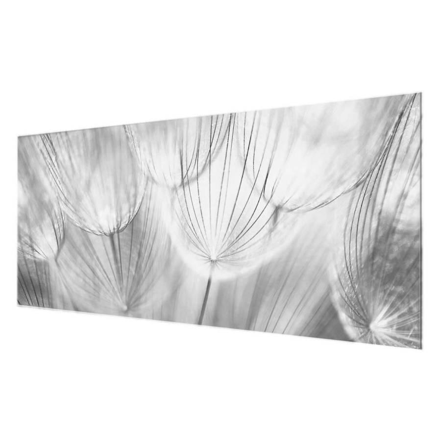 Cm EchtglasMehrfarbig Starkes Bild Makroaufnahme Pusteblume 80 X 30 ZXiuOPTwk