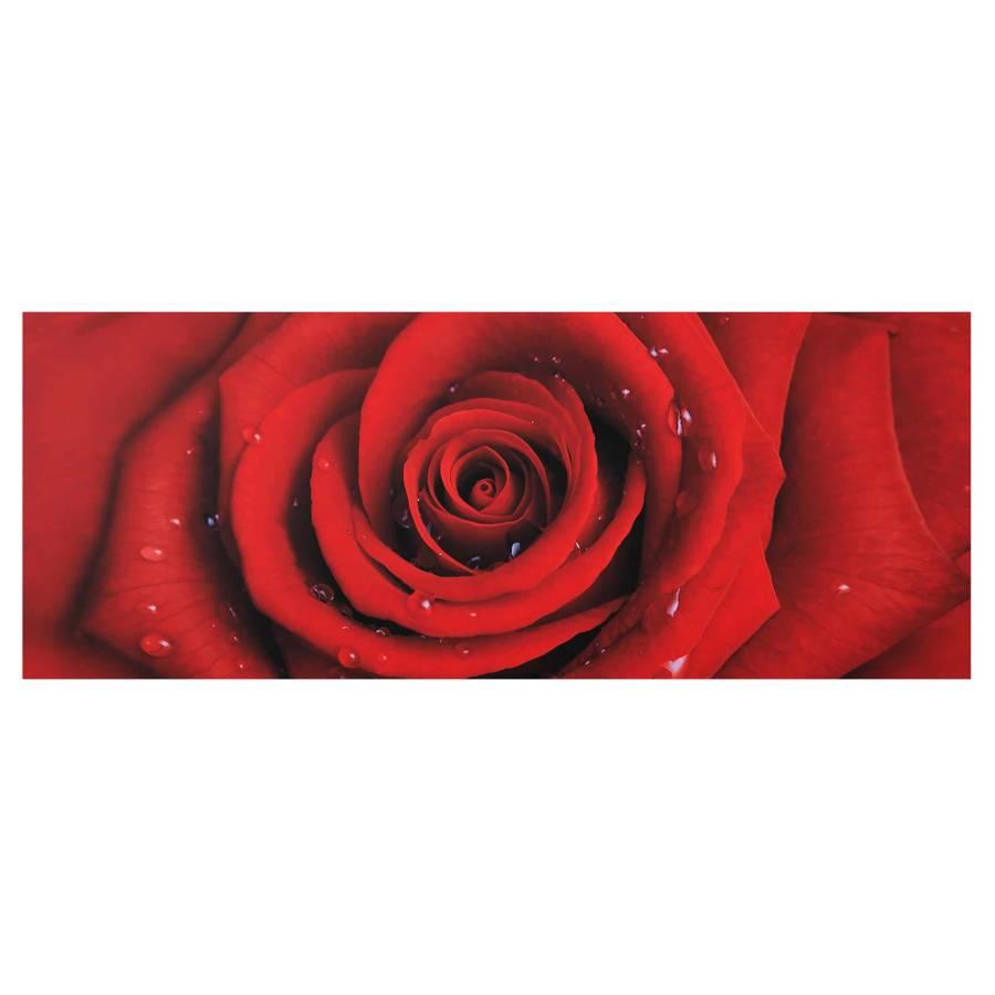 X Starkes EchtglasMehrfarbig 100 Rote Rose Wassertropfen Mit Cm Bild 40 wNv8mn0