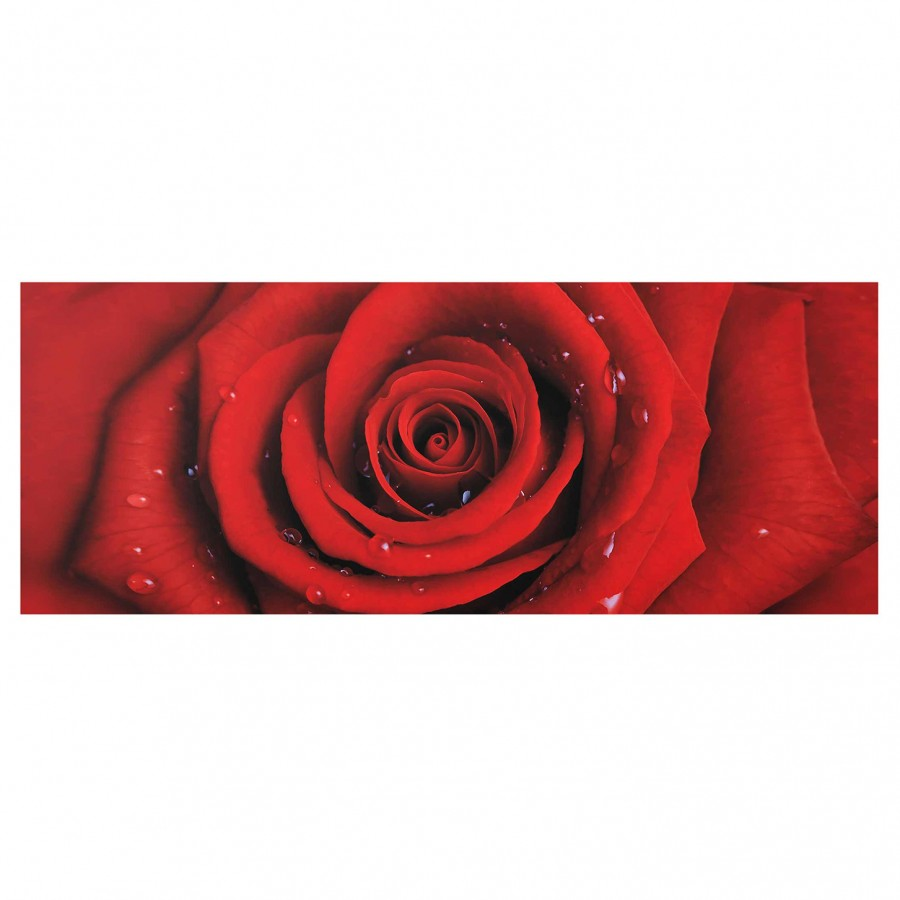 Rose Bild Wassertropfen Cm X Rote 40 EchtglasMehrfarbig Mit Starkes 100 5LR4Aj