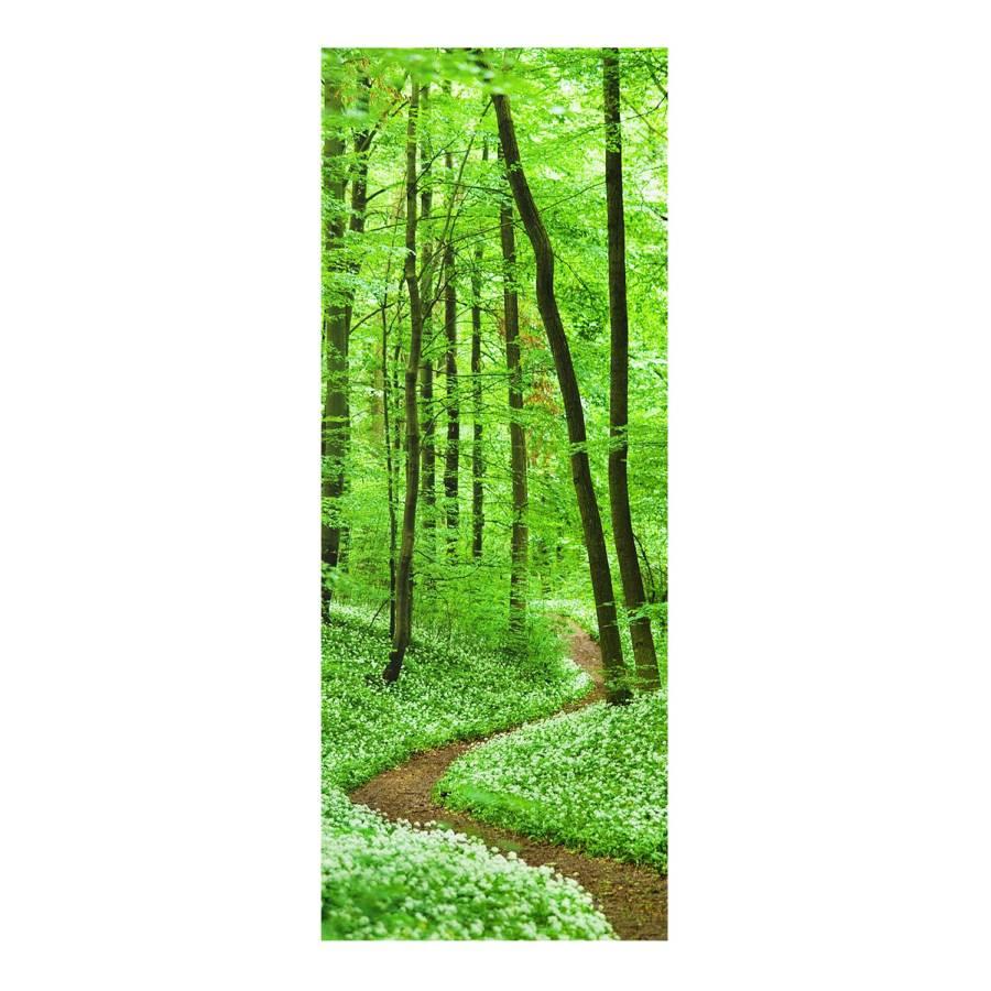 Cm Waldweg 100 40 EchtglasMehrfarbig Bild Romantischer Starkes X lFKT1Jc
