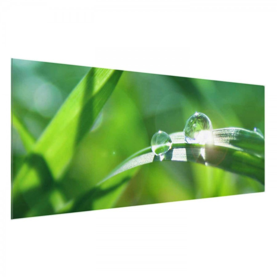 Véritable 80 Déco X Ii Verre Tableau Cm Green Ambiance 30 RésistantMulticolore 0wOXn8kP