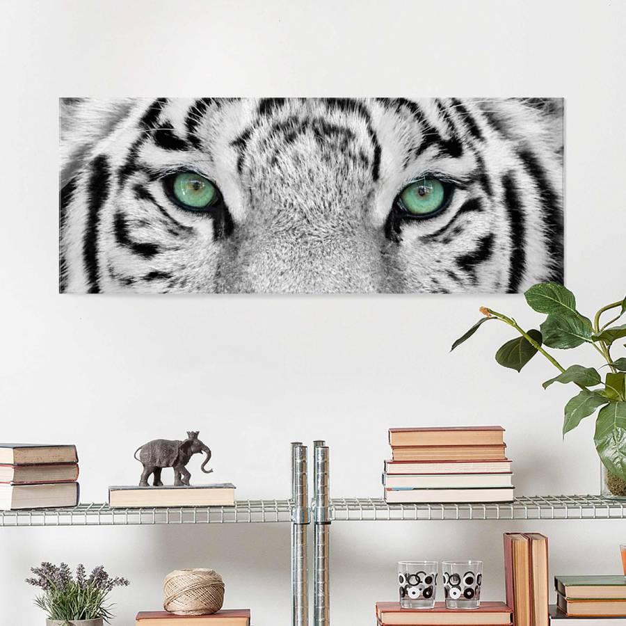 Bild Weißer Tiger 30 Cm 80 Starkes EchtglasMehrfarbig X 5jL4R3A