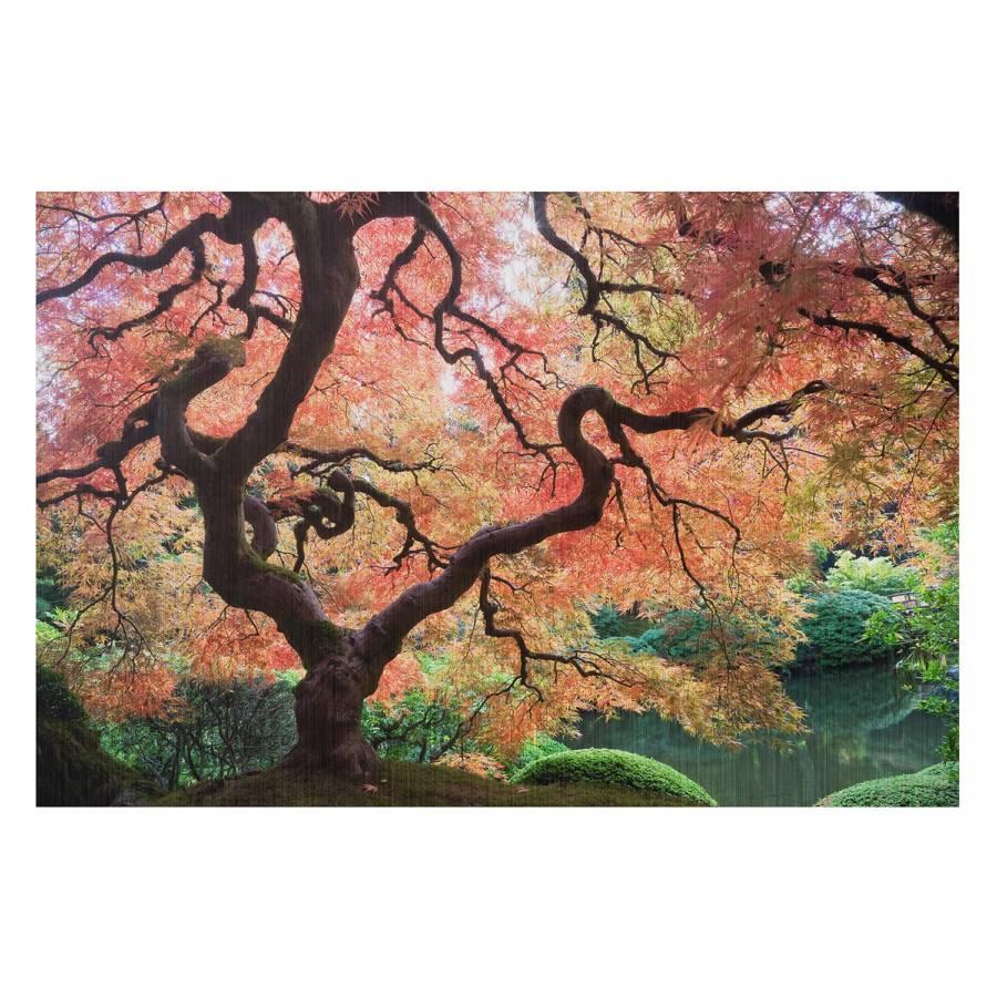 120 Iii Cm Bild AluminiumMehrfarbig 80 Garten Japanischer X erBodWCx