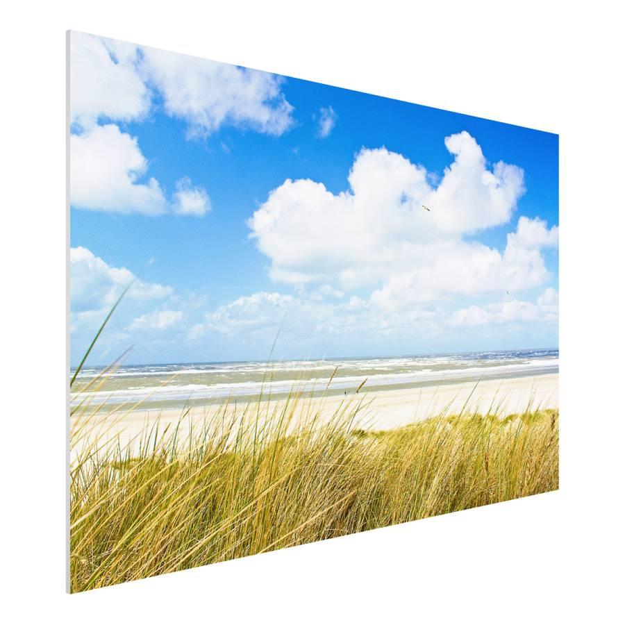 Bild Nordseeküste X 80 Forex Cm An hartschaumplatteMehrfarbig 120 Der H9I2ED