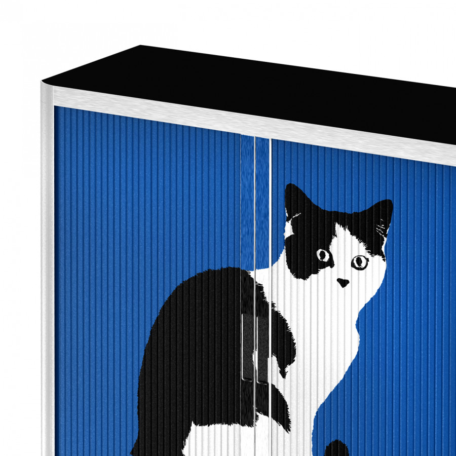 Art Rollladenschrank Easyoffice WeißBlau Pop Cat OX8nPk0w
