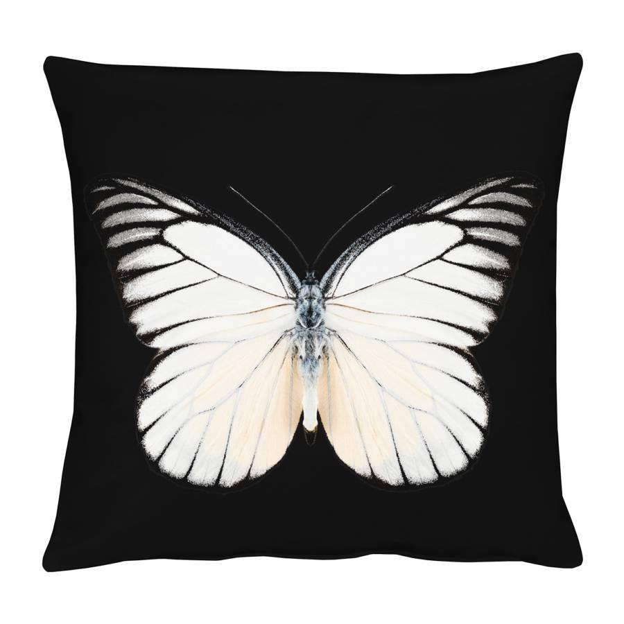SchwarzCreme Schmetterling Kissenbezug Schmetterling Kissenbezug Kissenbezug SchwarzCreme SchwarzCreme Schmetterling Kissenbezug Schmetterling Nm0v8nw