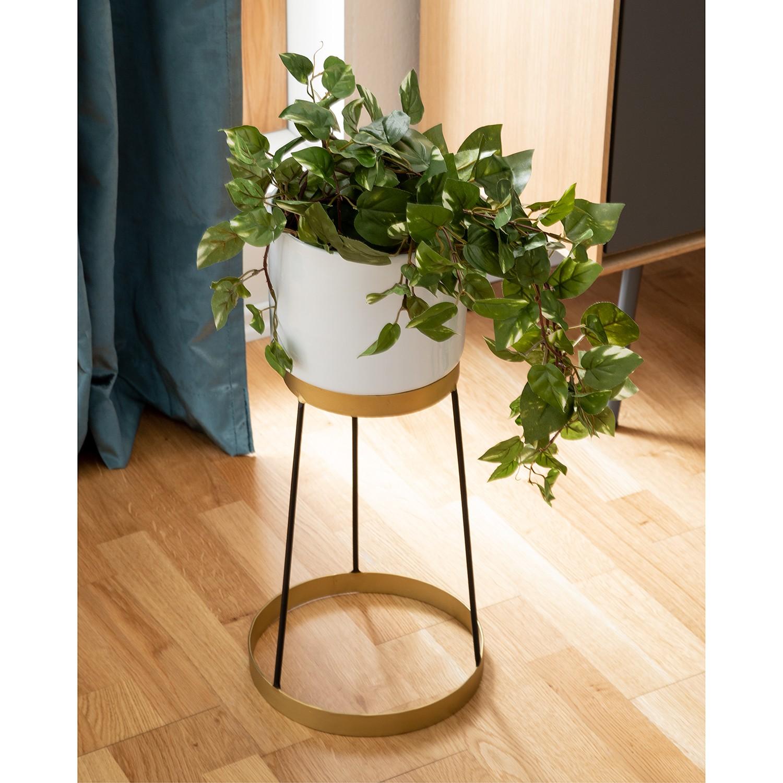 home24 Blumenstaender Cardini (2-teilig) | Dekoration > Dekopflanzen > Blumenständer | twentyfour
